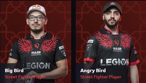 Big Bird and Angry Bird